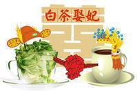 安吉白茶品牌故事