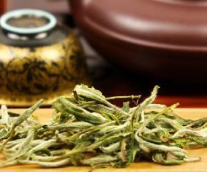 安吉白茶是绿茶 福鼎白茶是不是绿茶呢?