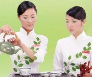 简单介绍白茶的品鉴方法